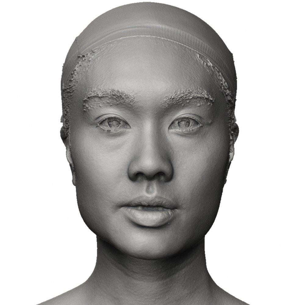 Peachy Female Face Shape 3D Head Scan 02 Schematic Wiring Diagrams Amerangerunnerswayorg