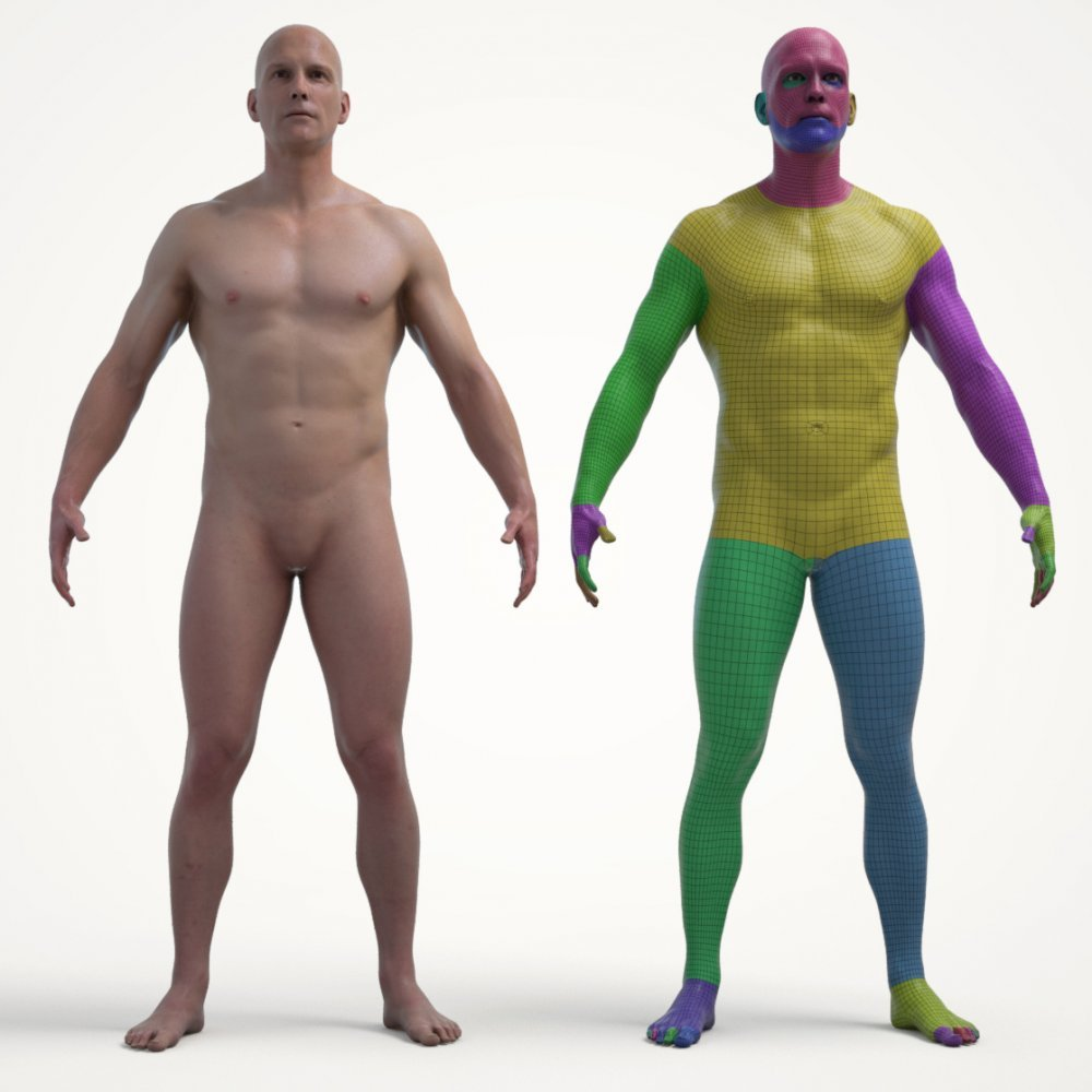 Ultimate Textured Male Base Mesh
