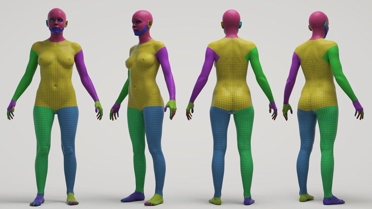 Female-Polygroups-Base-Mesh.jpg