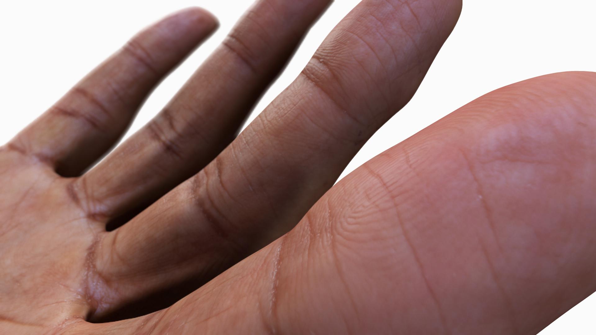 3D Male Hands Black