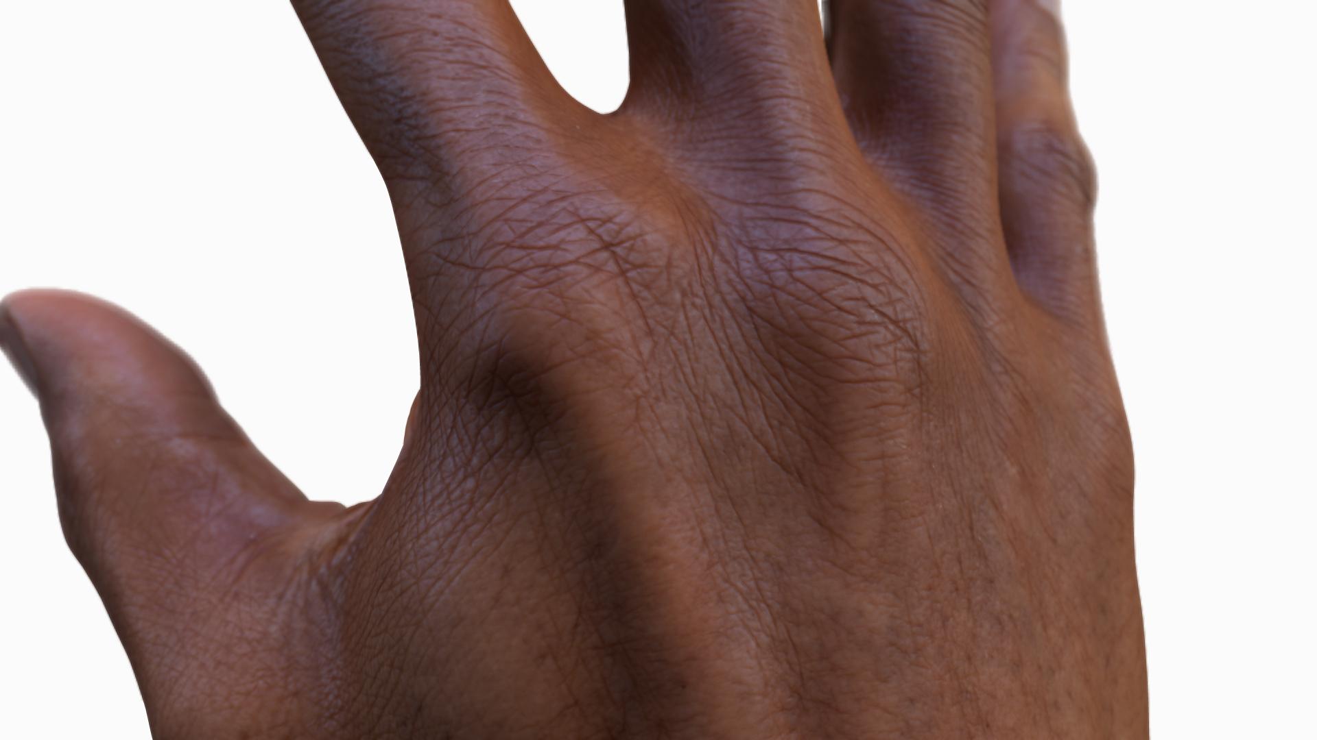 3D Man Hands Model Download