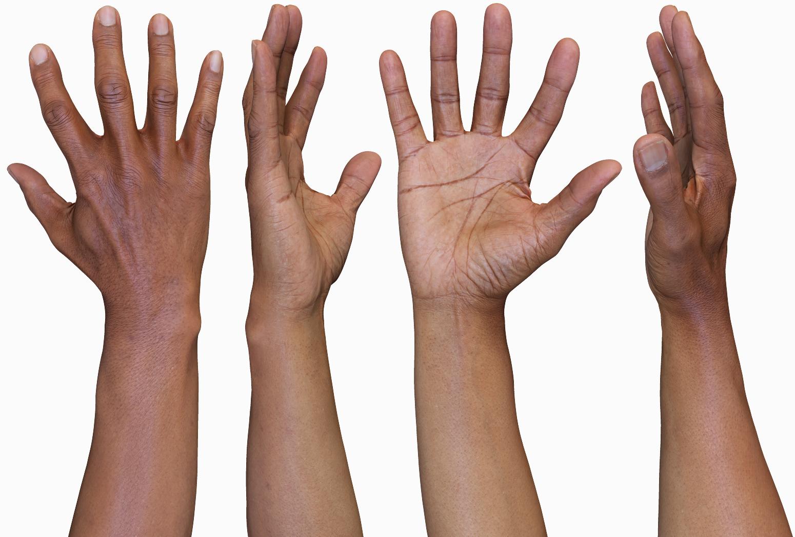 3D Male Hands Model