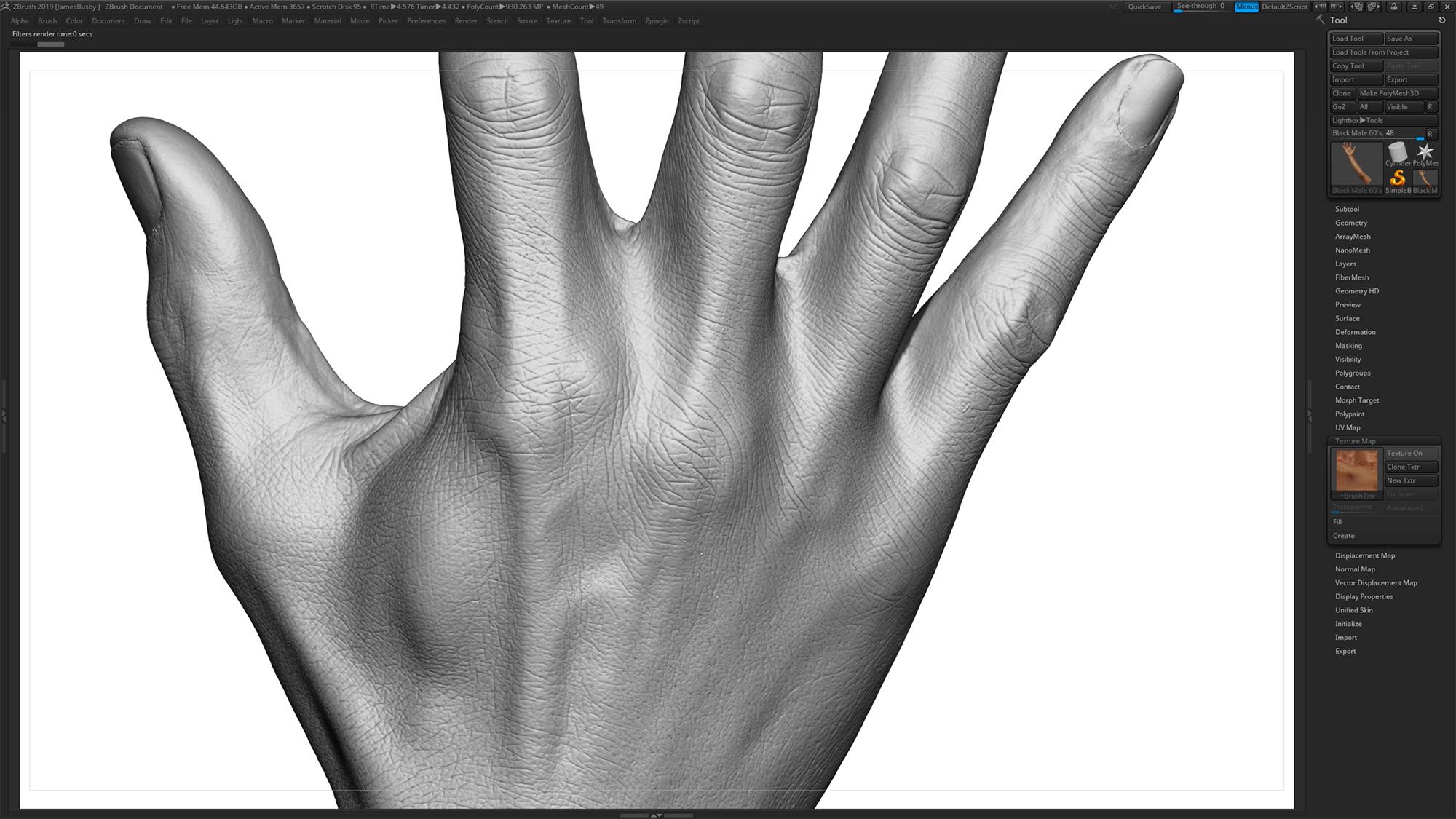 Zbrush Sculpt Male 3D Hands Texture