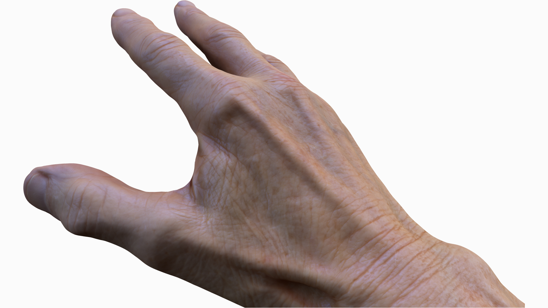 3D hand textures and UV maps