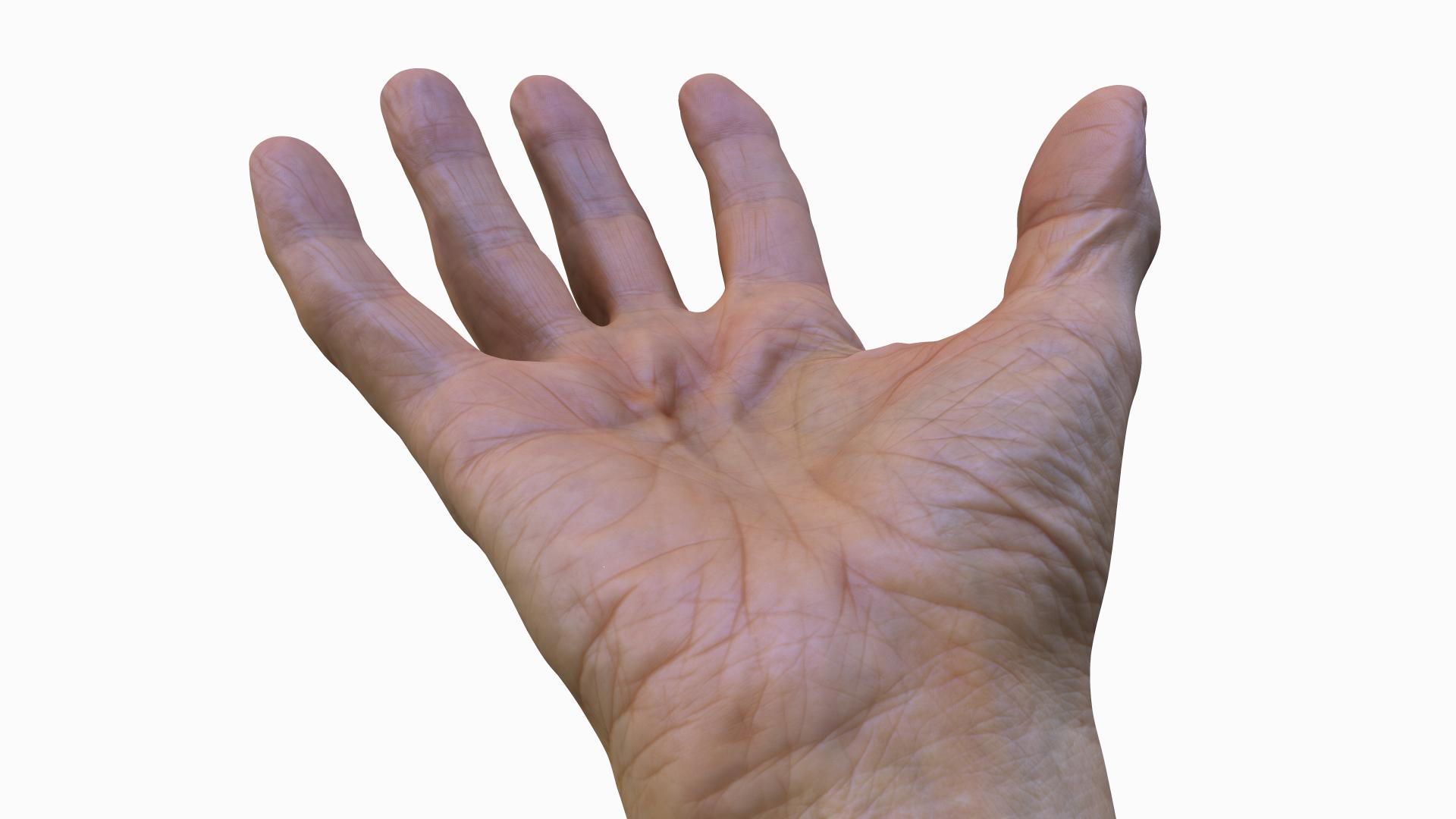 Hand_Palm_Texture.jpg