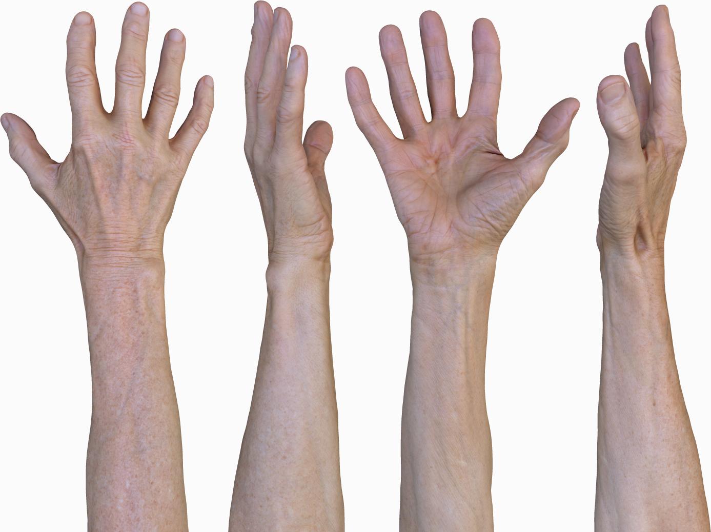 3D Male hands retopology texture