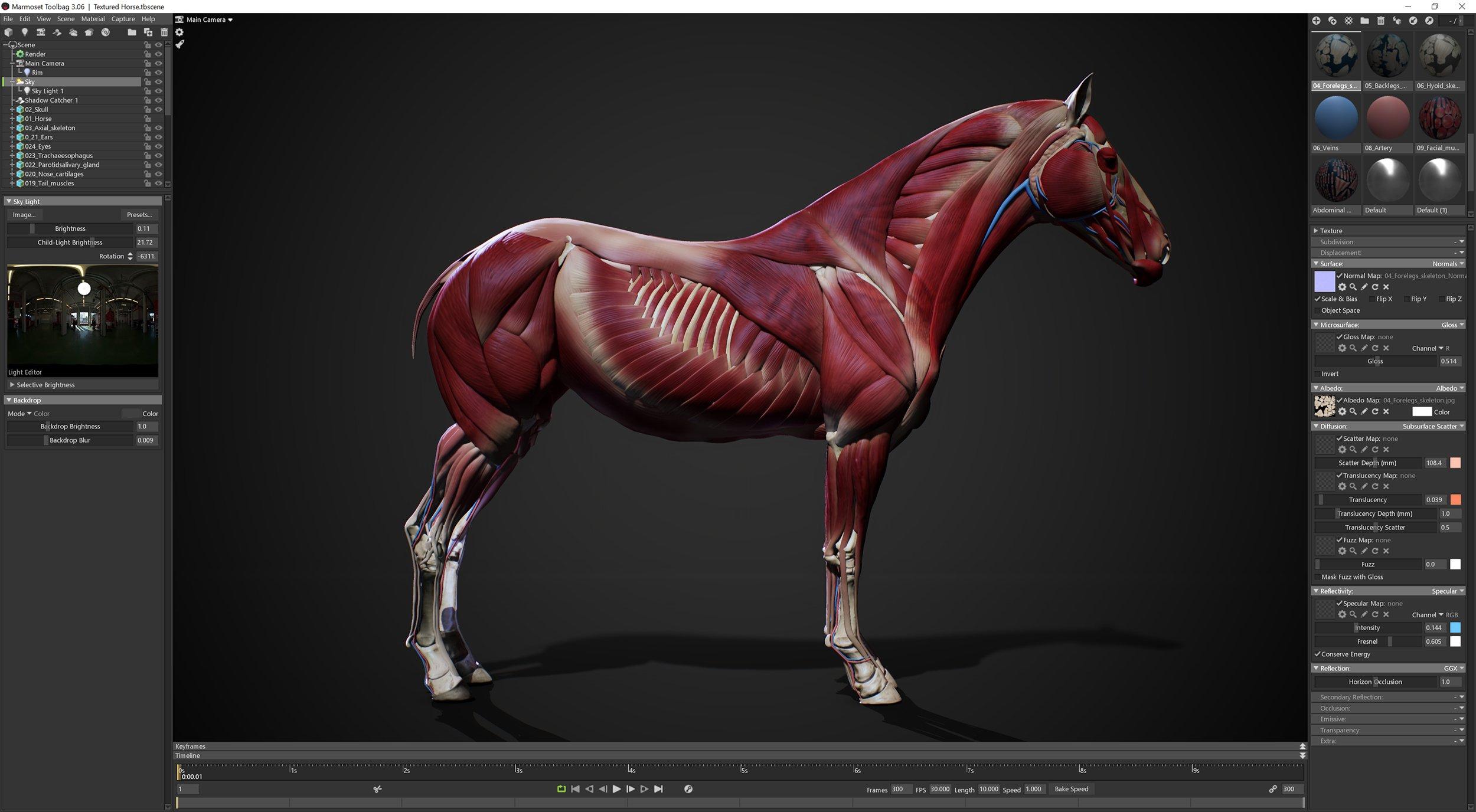 3D Polygon Horse Model