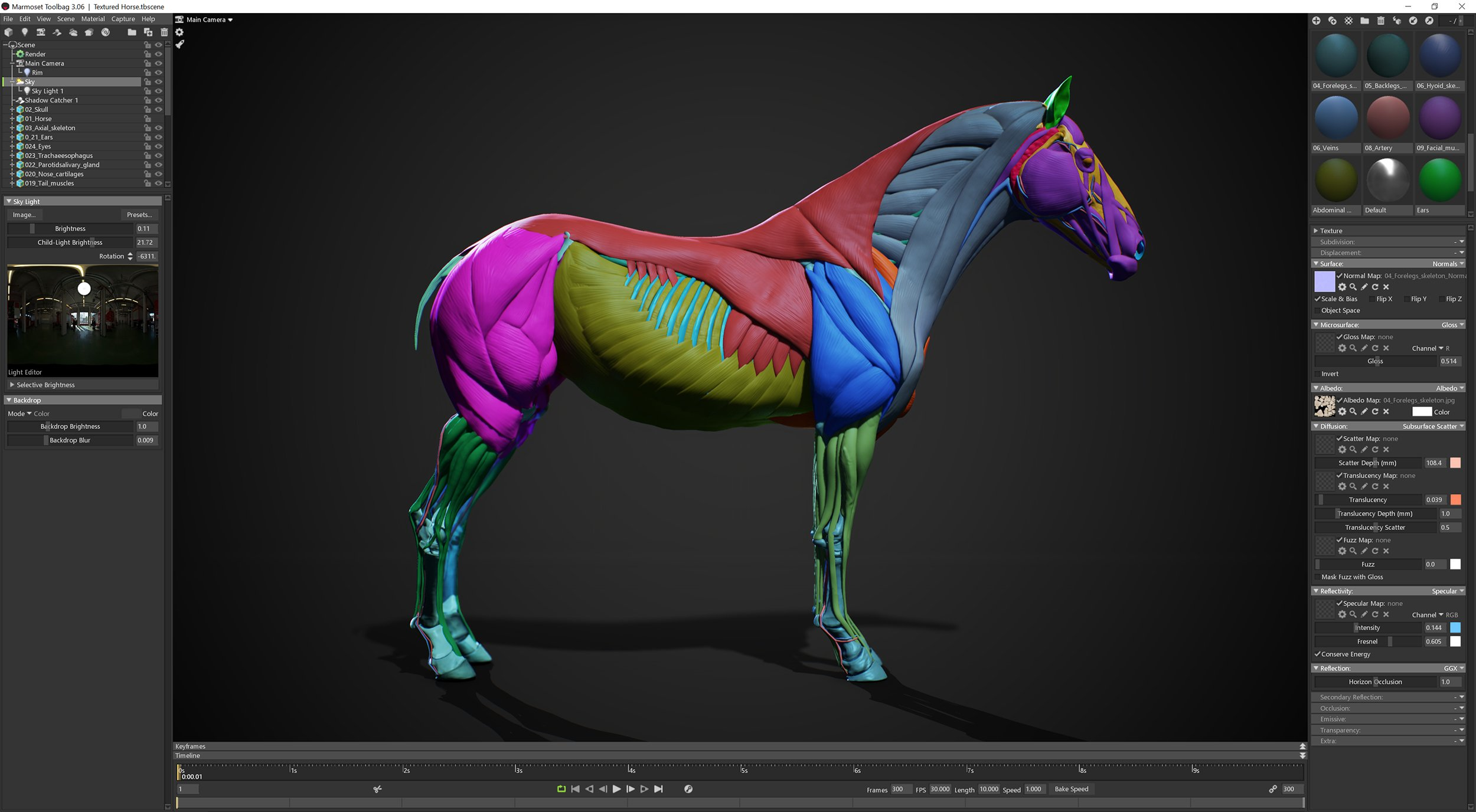 3D Horse Low Polygon