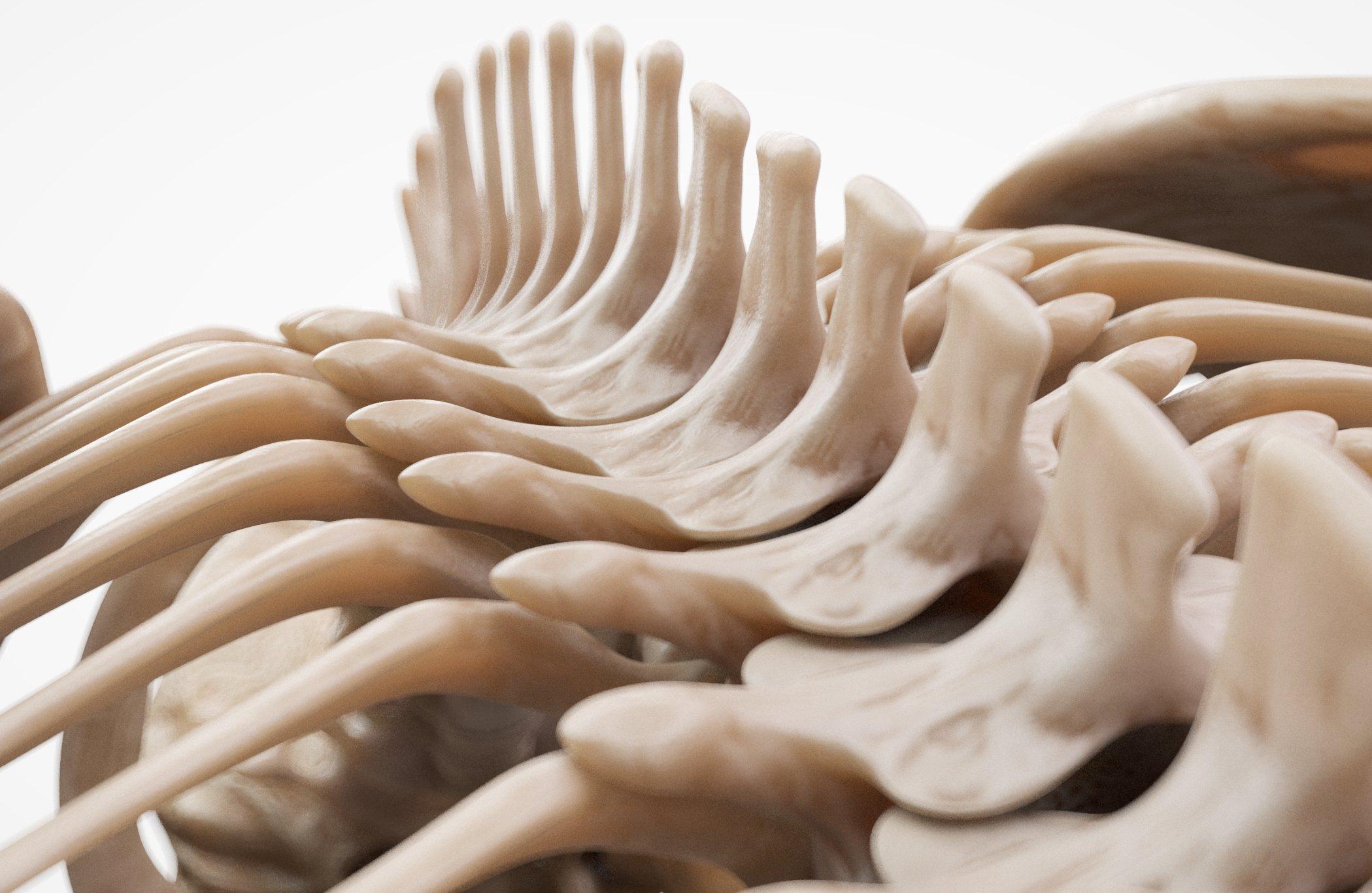 Download Gorilla Skeleton 3D Model