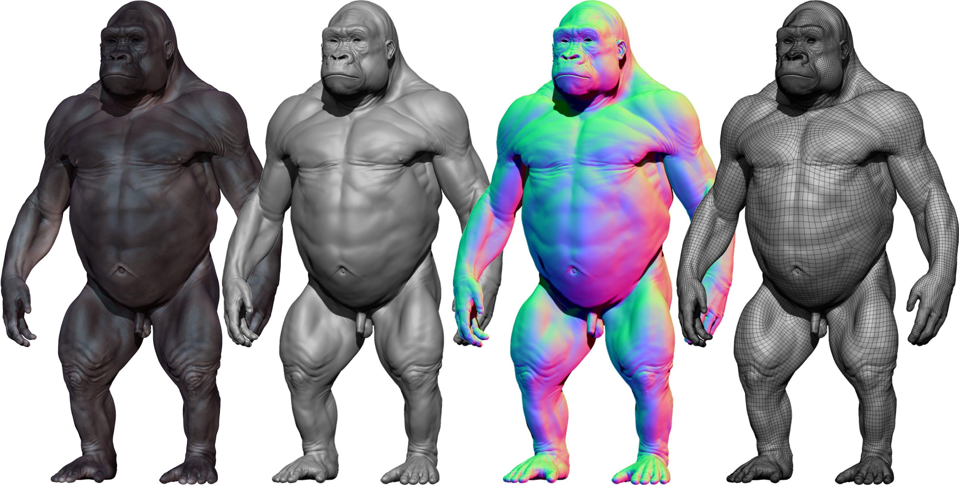 Download 3D Model of Gorilla