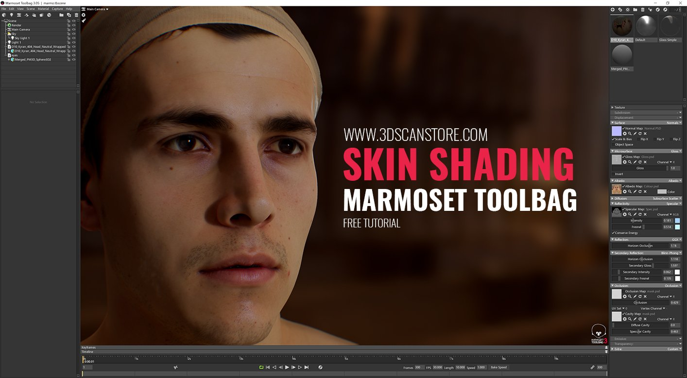 Skin Shading In Marmoset Toolbag